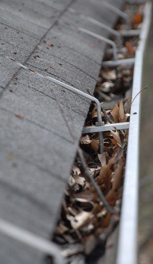 Gutters on flat roofs need maintenance - leaves constantly fill gutters up
