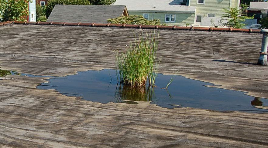 Repair A Flat Roof