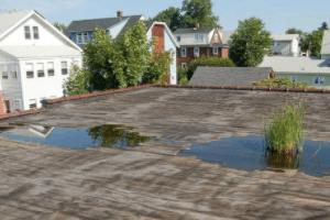 Flat Roof Repairs, skylights, drains, chimneys, flashing