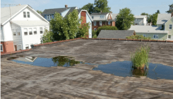 Flat Roof Repairs, skylights, drains, chimneys, flashing