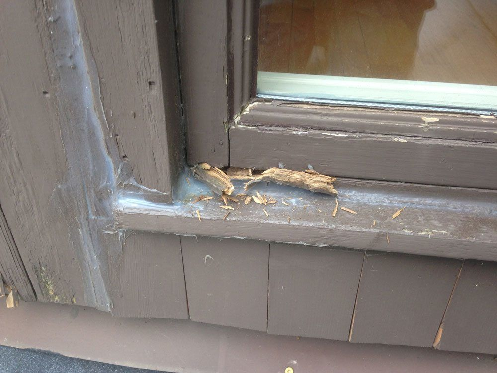 Window sill rotten for Window sill replacement