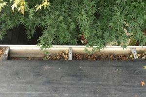 Gutter for flat roofs