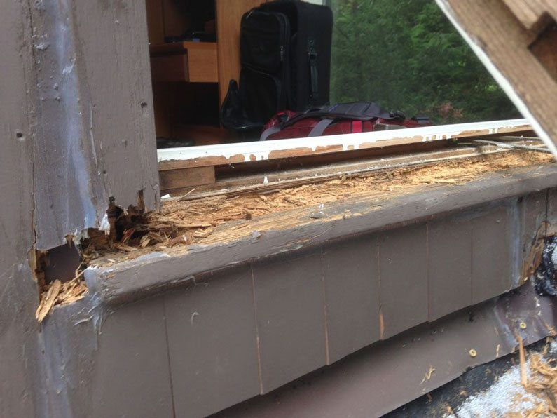 Entire window frame rotten