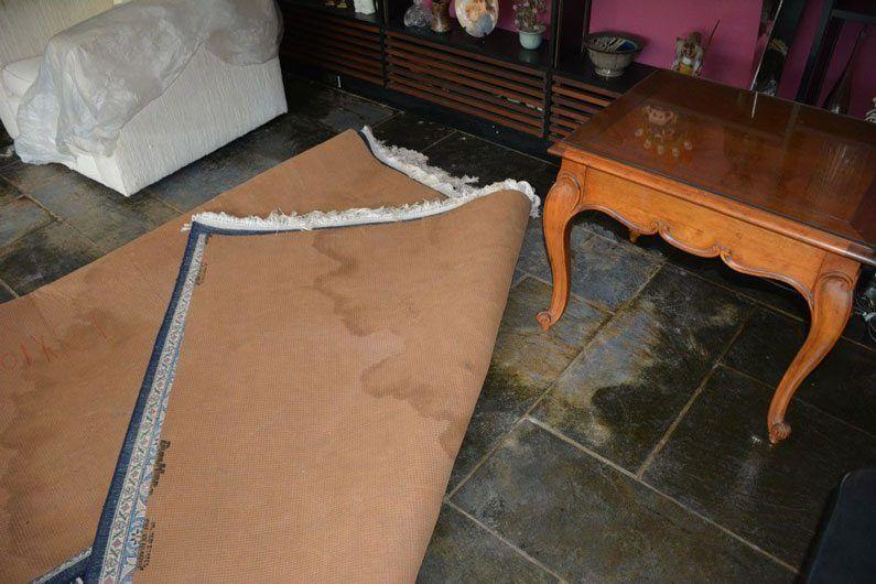 Rugs damaged