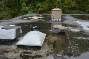 Con artist roofing contractor