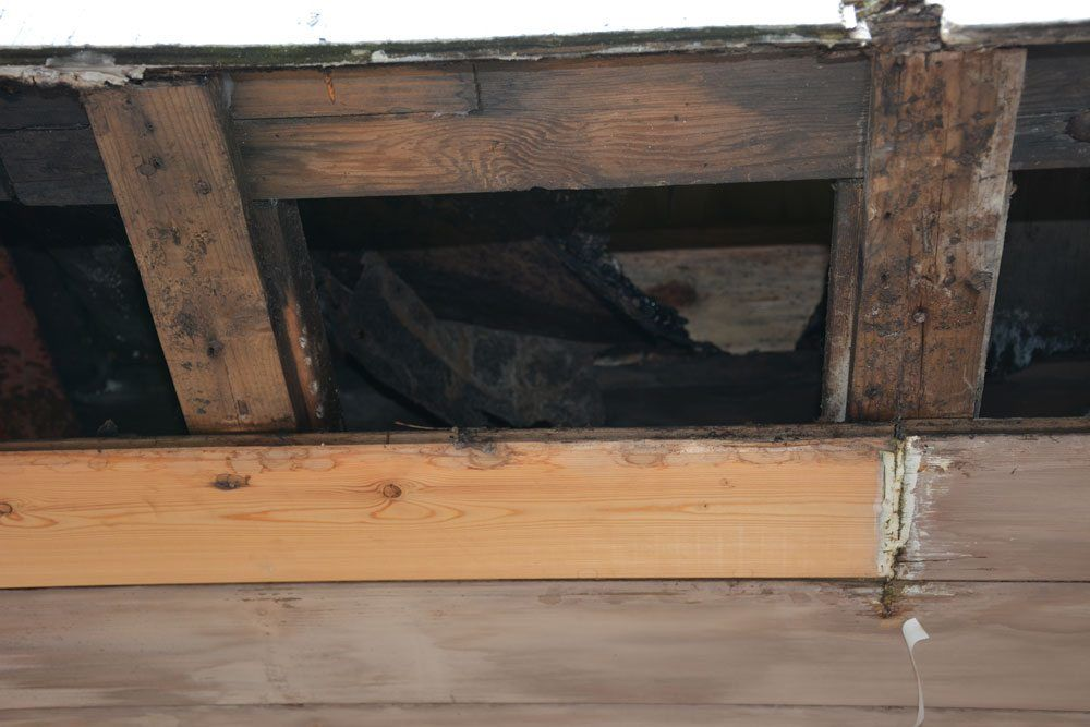 Mold And Insulation Flat Roof Repairs And Installation